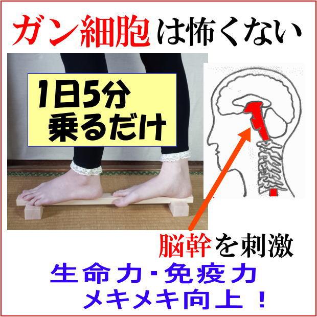 脳幹トレーニングバランサーで脳幹訓練・がん細胞は怖くない